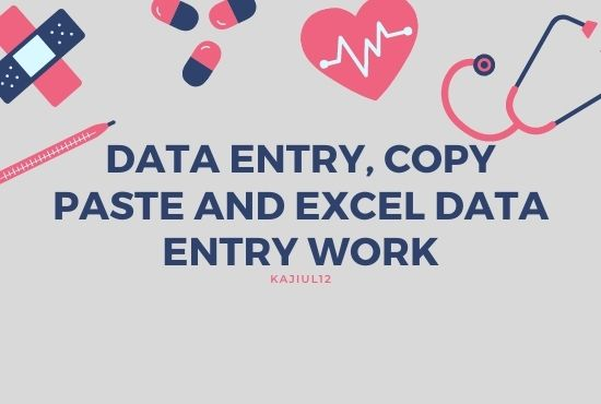data entry,  copy paste and excel data entry work for you
