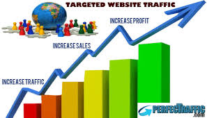 provide 500,000 Instagram Real USA keyword target,  organic traffic,  trackable with google adsense