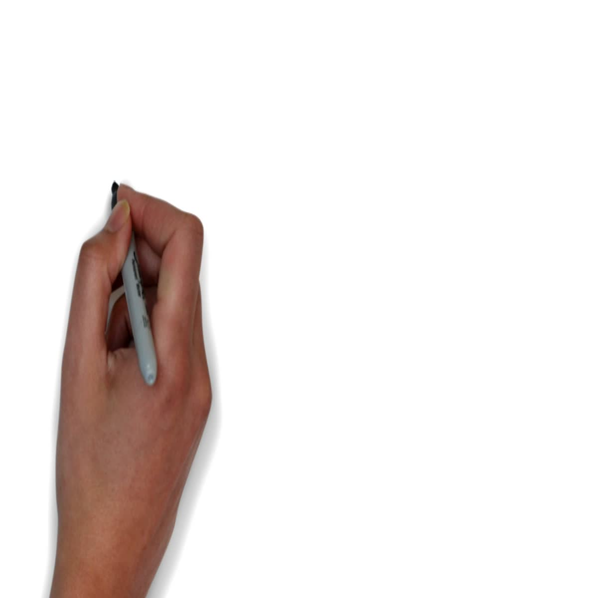 I will create whiteboard animation video with voiceover