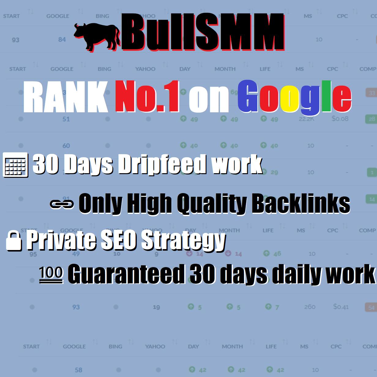 Rank No. 1 on Google Manual SEO Backlinks - 30 days website backlinks building
