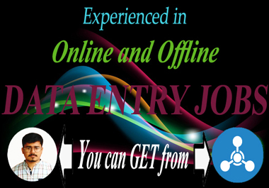 I will do offline and online data entry