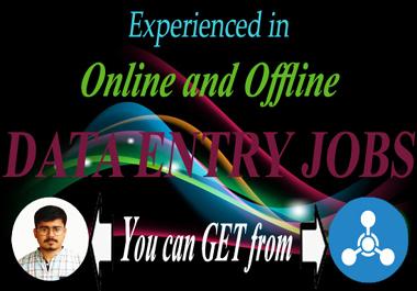 I will do offline and online data entry