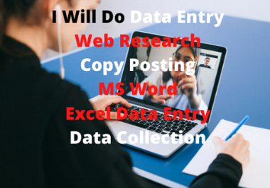 I will doOnline data entry,  copy posting,  excel, data collection, and other