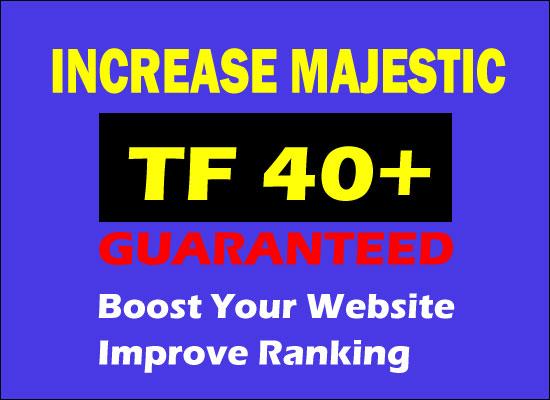 i will increase majestic trust flow 30 plus