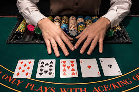 support backlink Casino/Poker/Gambling100 PBN Links Permanent Royal your website Value and 2nd tier