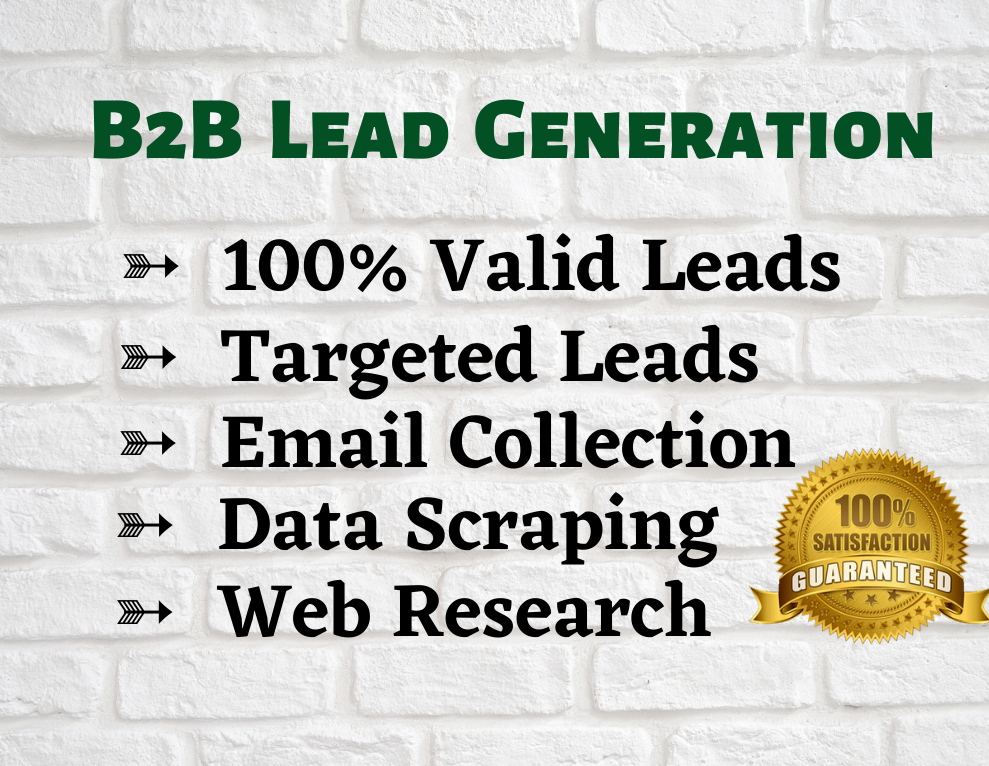 I will do any kind of Lead Generation,  Web Research,  Email List Building etc