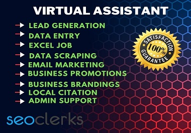 I will be your Professional and well Organized Virtual Assistant for your any kind of project.