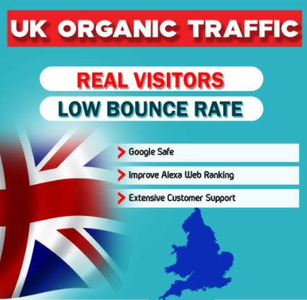 I will drive real organic targeted traffic to your website