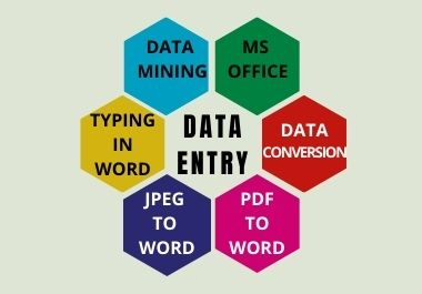 I will do data entry copy past MS office work for you in a short time