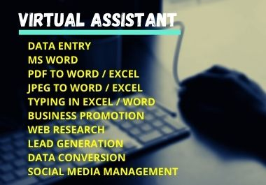 I am virtual assistant. Contact us to understand the work of any of your DATA ENTRY,  EXCEL JOB.