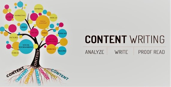 I will write new content, SEO website,  blog and article writer