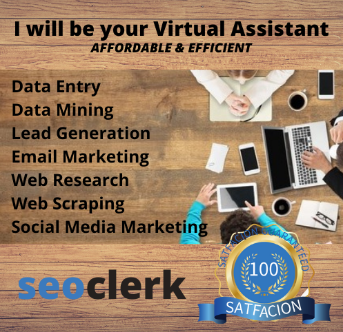 Affordable & Efficient Virtual Assistant in 24/7