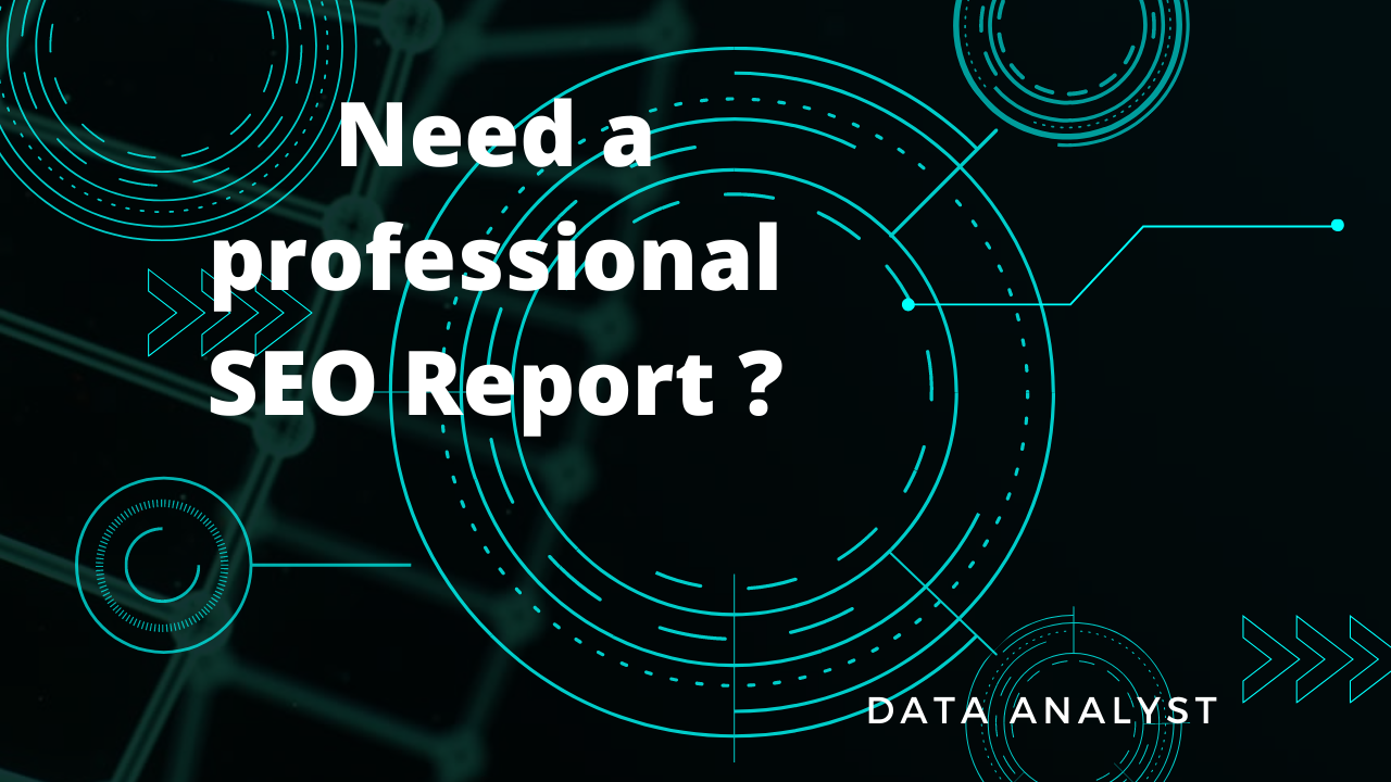 I will provide a professional SEO report website analysis