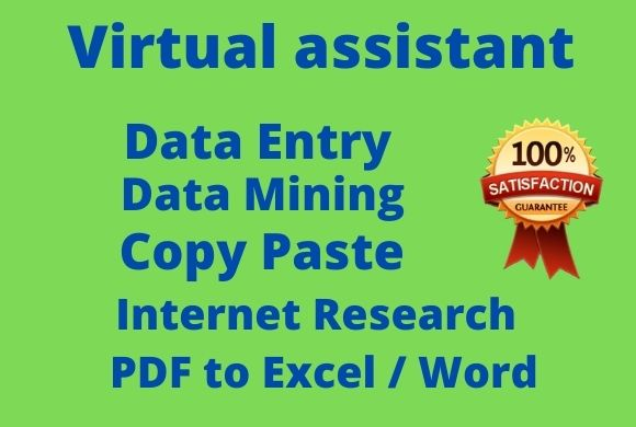 I will be your virtual assistant for data entry,  data mining,  copy paste, PDF to Excel, web research