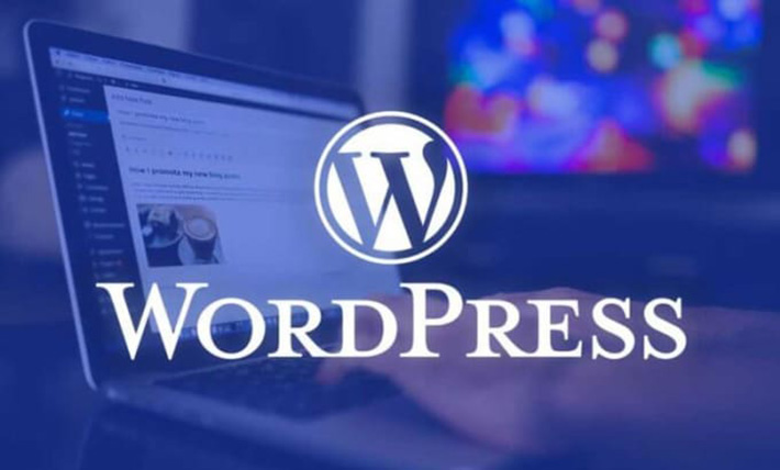 I will install WordPress,  theme setup demo and do customization