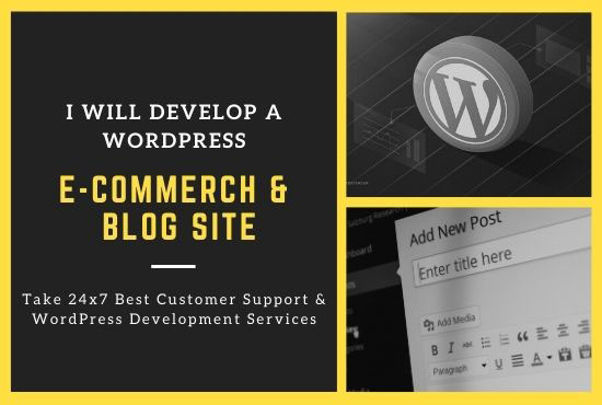 I will develop a wordpress e commerce website and blog site