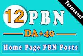 12 DA 55-30+ homepage high quality PBN Backlinks