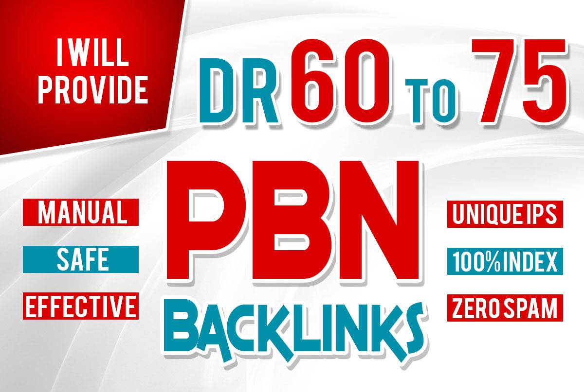 20 DR 60+ permanant Manual homepage high quality PBN Backlinks