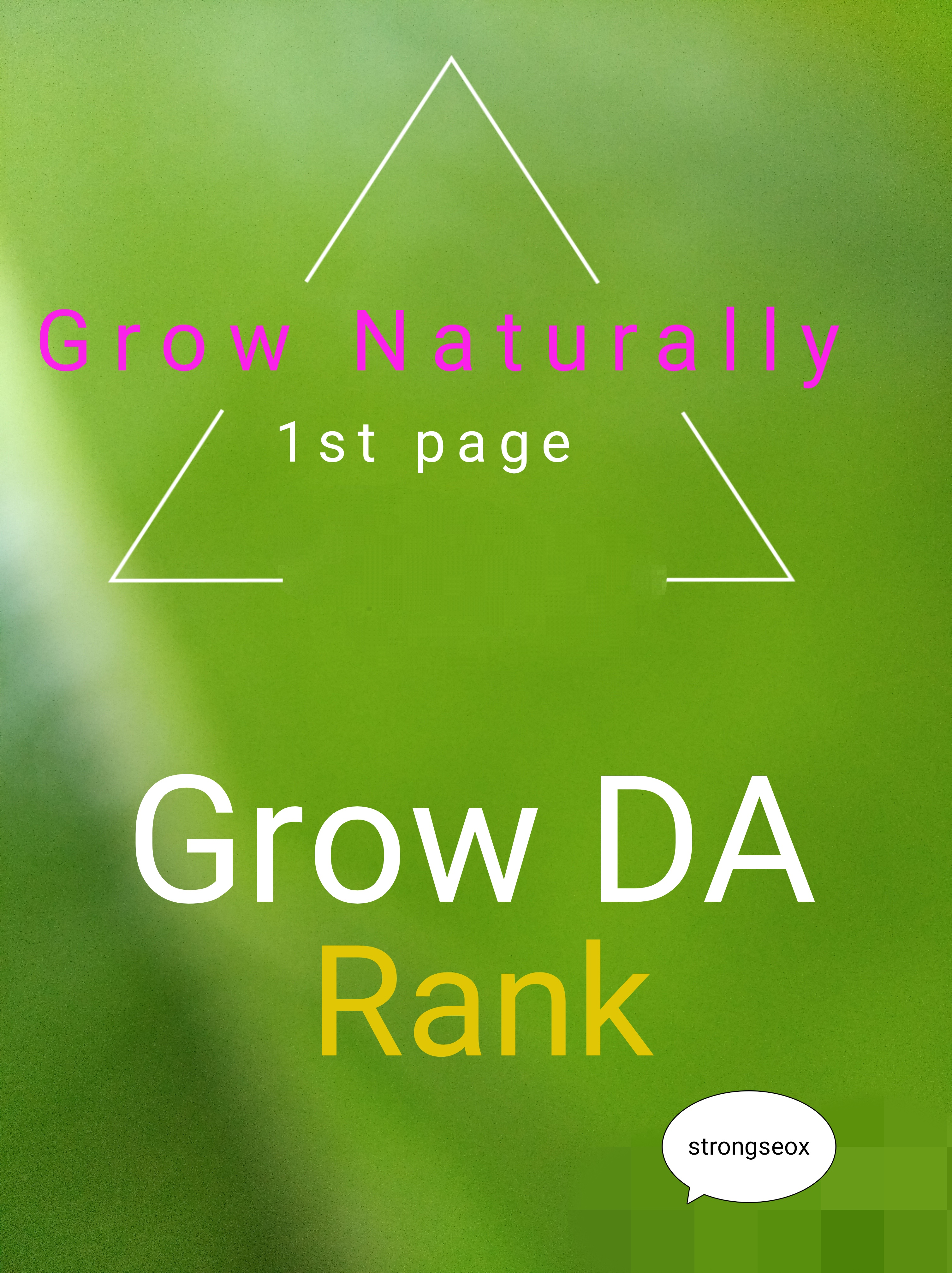 1'st page in 10 weeks & Grow your site's Domain Rank in google guarantee