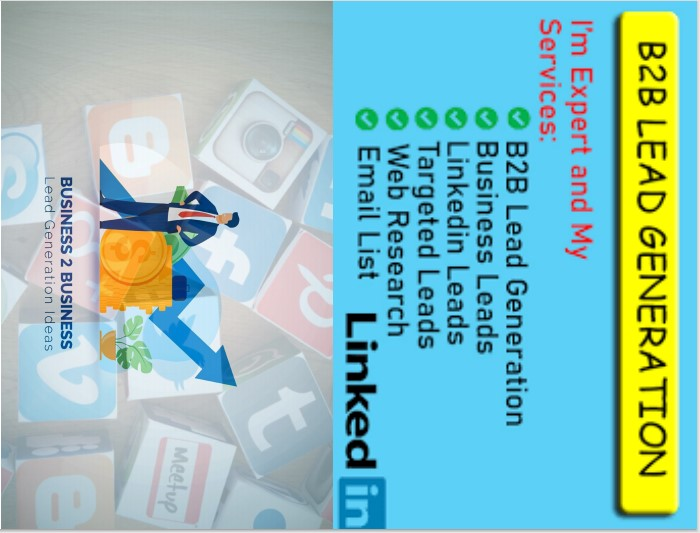 I will do b2b lead generation,  targeted lead generation and web research