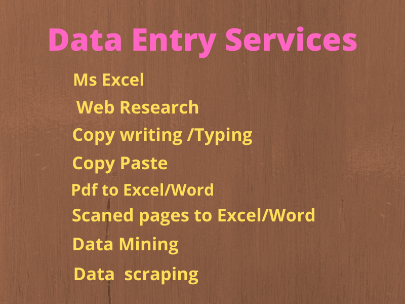 I will do Data Entry,Copy Paste,Web Research and Excel Data sheet
