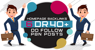 Build 6 Permanent DR 40+ Homepage PBN Dofollow Backlink
