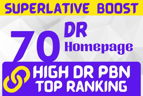 40 Hompage PBN DR 50 to 70 backlinks