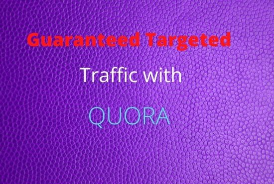 provide 60 HQ Quora answers With Guaranteed target Traffic