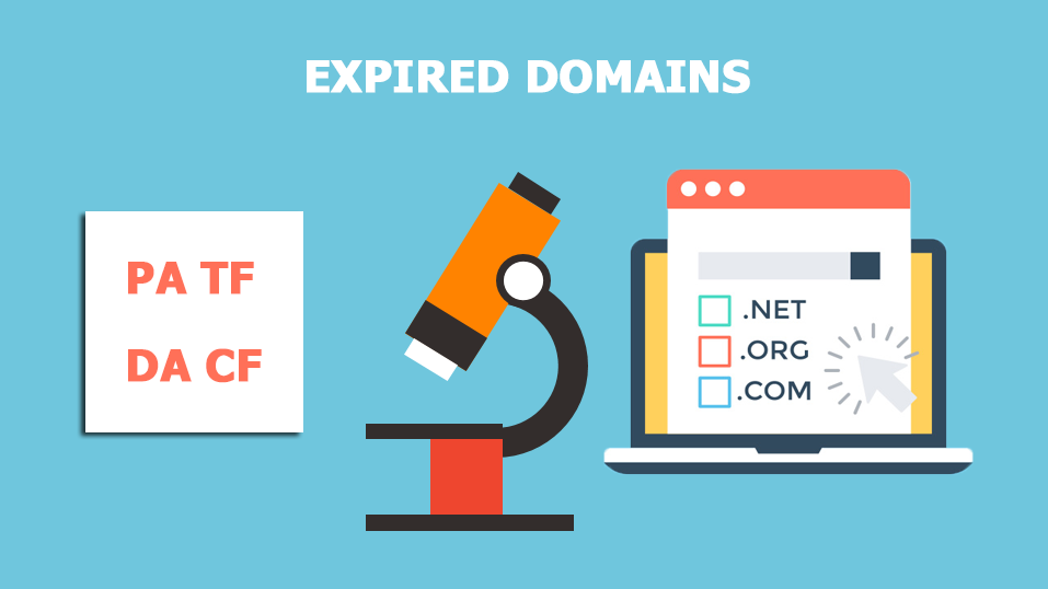 Find an expired domain and do expired domain research