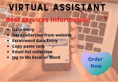 I will be your professional virtual Assistent