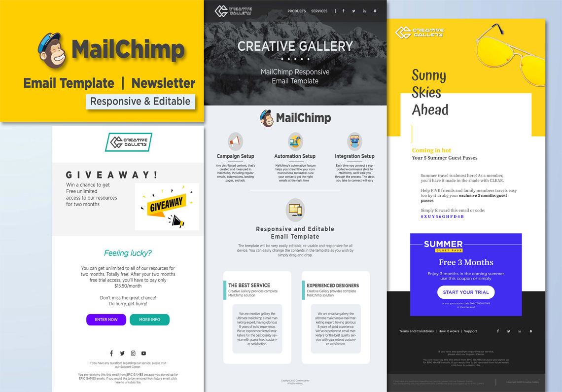 Do Anything in MailChimp or Design Email Template Newsletter
