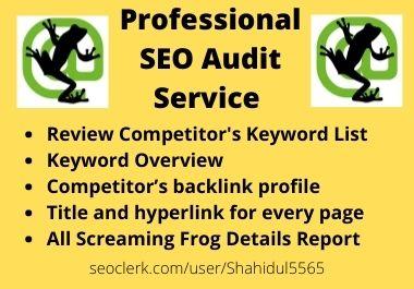 I will provide a full SEO Audit for any website