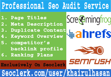 I will provide professional SEO audit and ranking plan