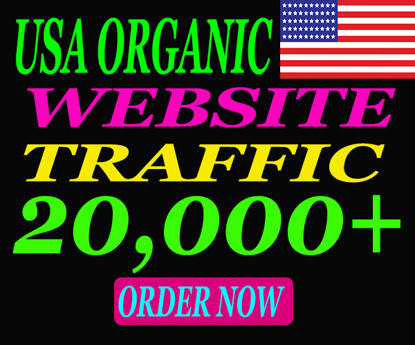 I Will Send 20,000 USA Real-Targeted Organic Traffic From Google for your website.