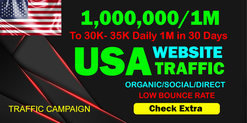 I will Drive Organic 1,000,000 1 M Traffic From The USA To Your website within 30 days.