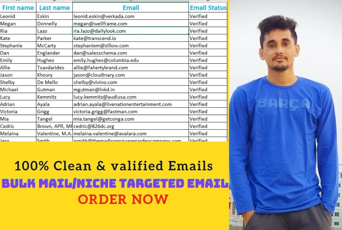 I will provide bulk email,  niche targeted email