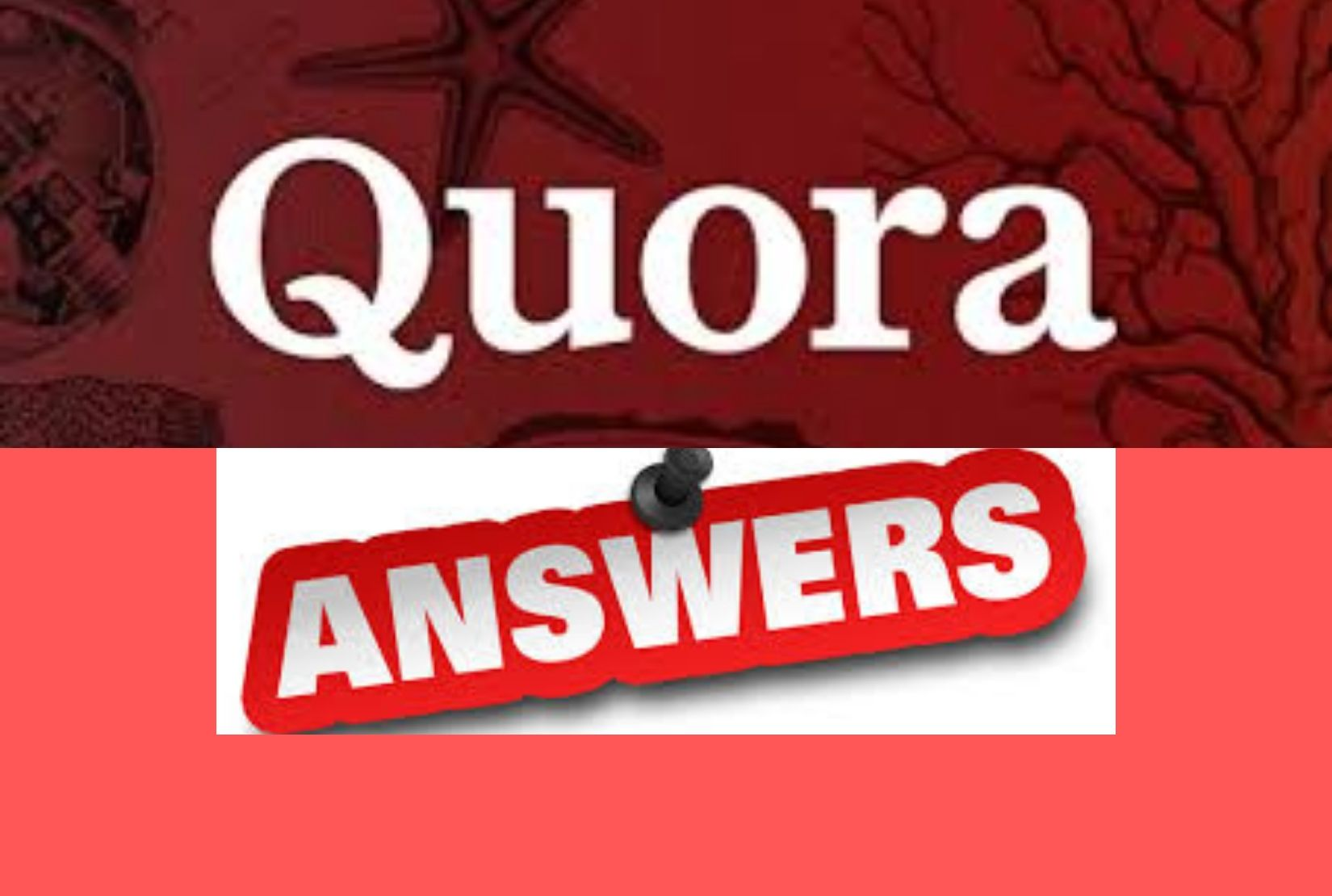 I will give you 6 high quality Quora answer with backlink