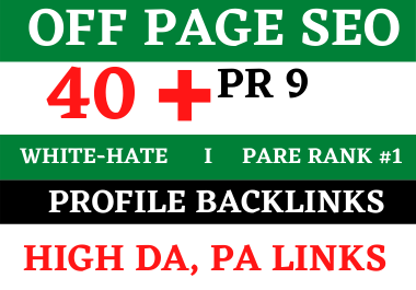 40 PR9 High Quality SEO profile backlinks- Manually Create Skyrocket your website
