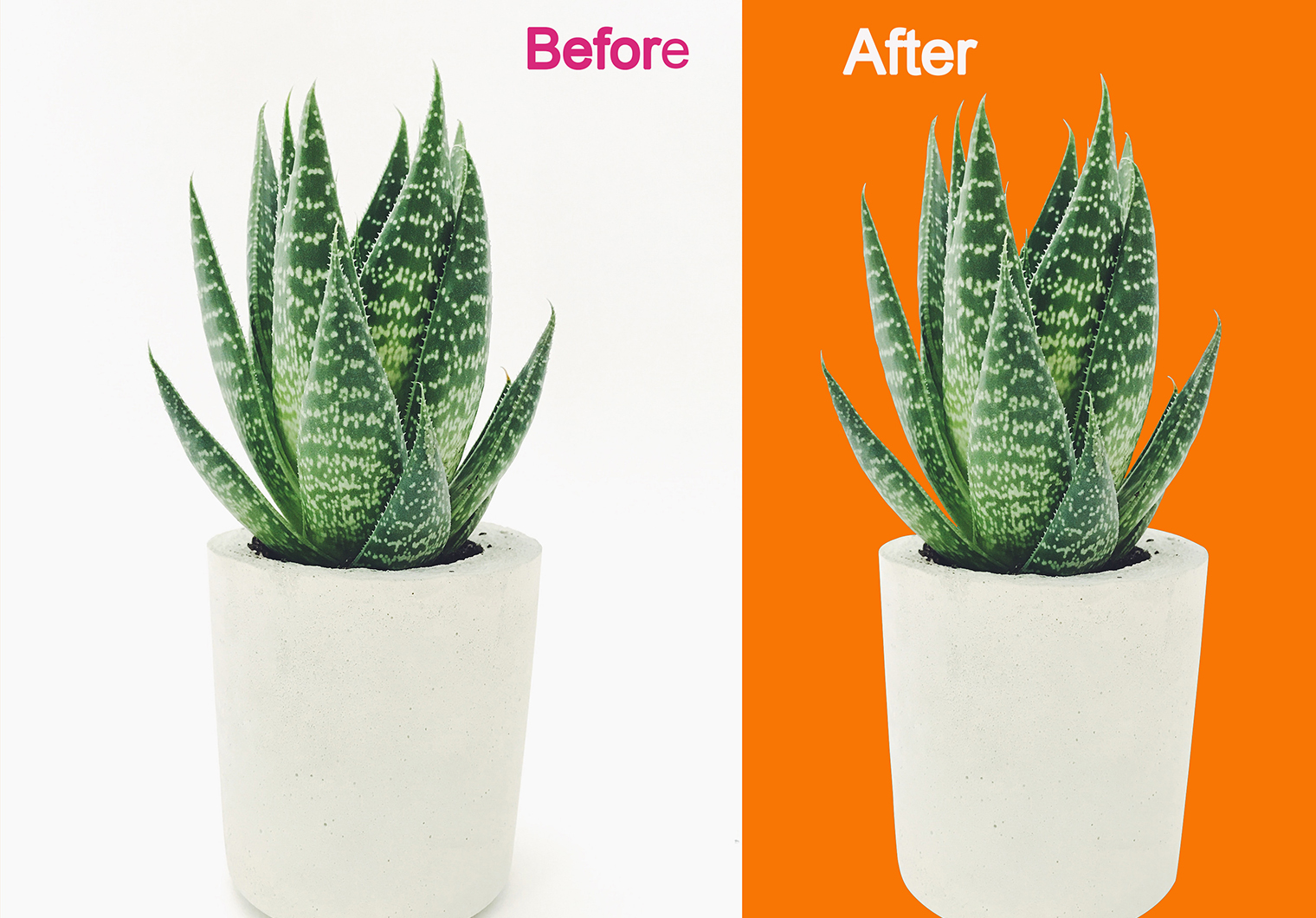 I will do 5 image background remove, clipping path and image editing