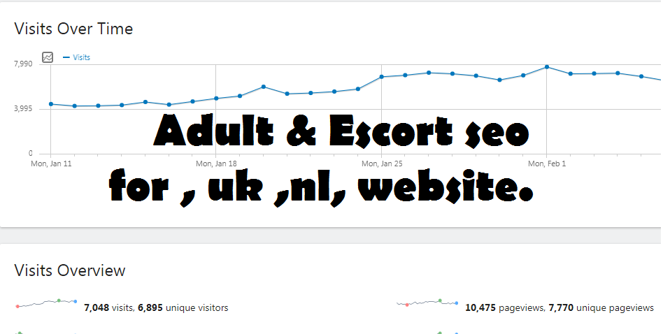 I will do escort website seo for you in low budget