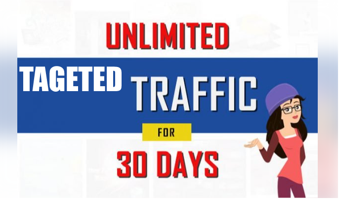 Unlimited Targeted web traffic,  organic visit for 30 Days