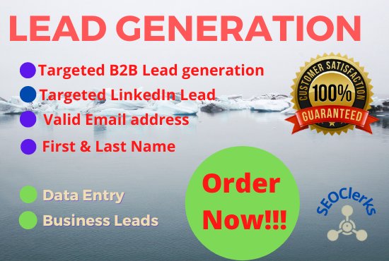 I will expertly create targeted lead generation and email with best output for your business
