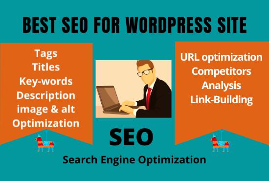 Best SEO for Word Press Website under Cheap Price