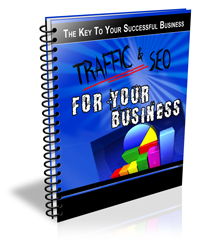 traffic and seo for your business