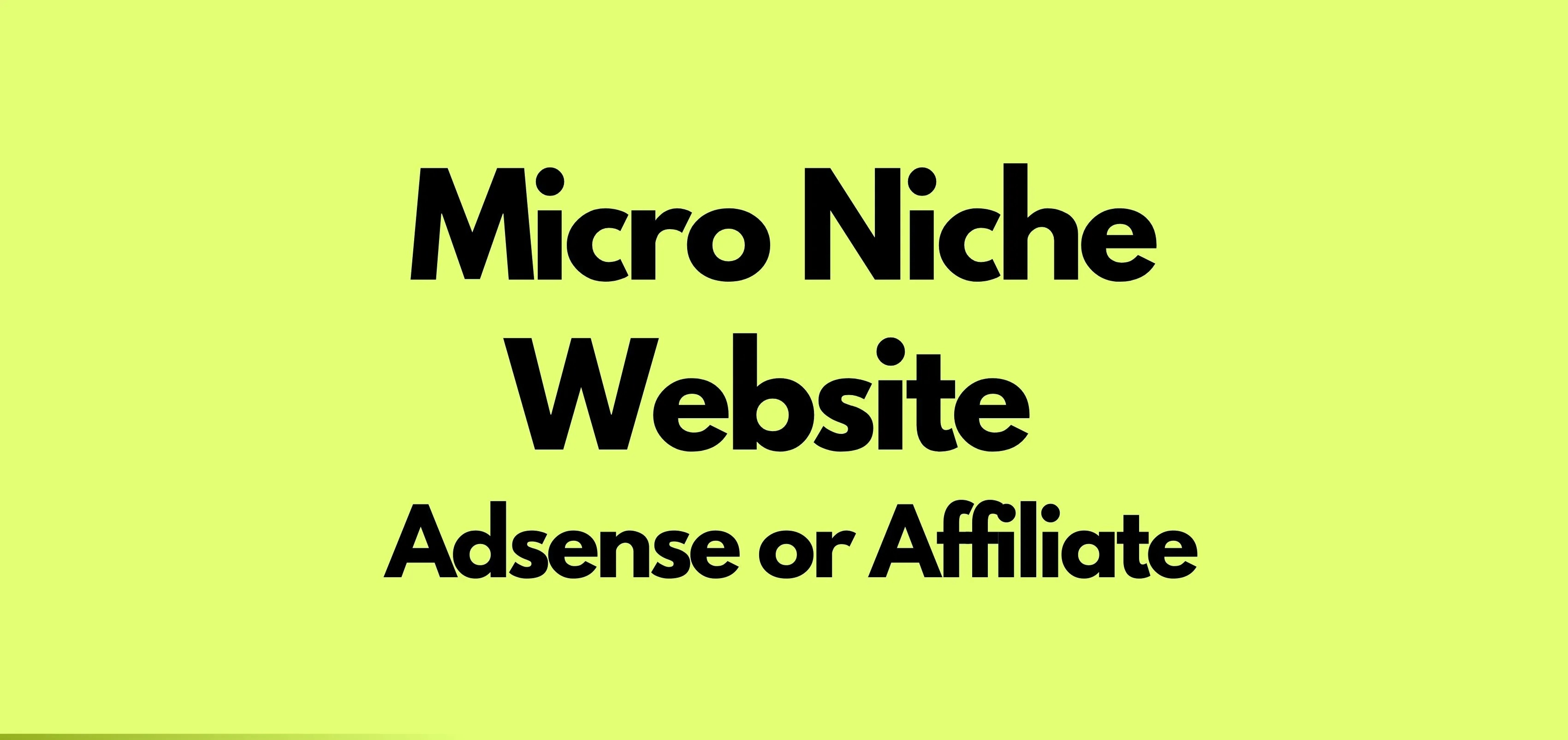 I Will Create An Adsense Micro-Niche Website