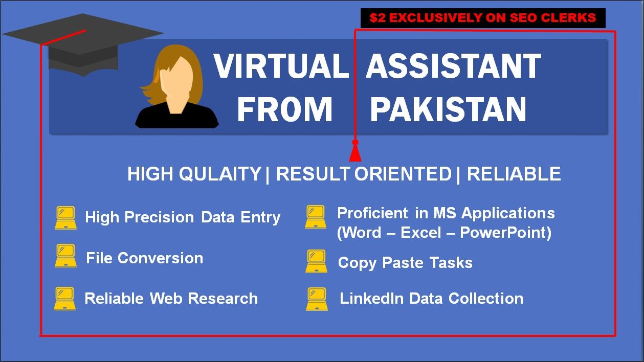 I will be your dynamic Personal Virtual Assistant from Pakistan