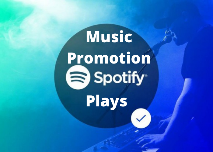 I will Do Professionally Music Promotion + Monthly Listeners
