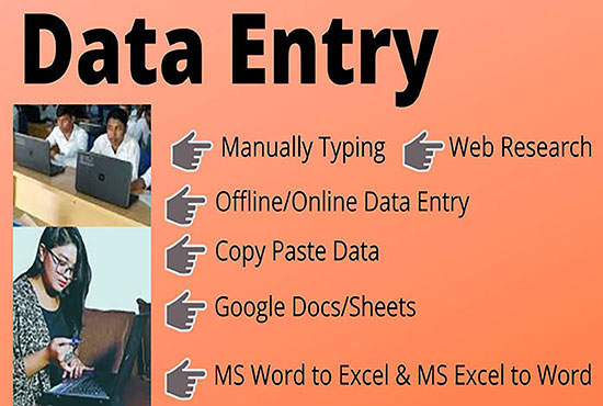 I will do any kind of data entry job