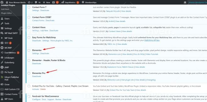 I will install Elementor Pro, Astra Pro, Wp Rocket, Crockblock Wordpress Website Design