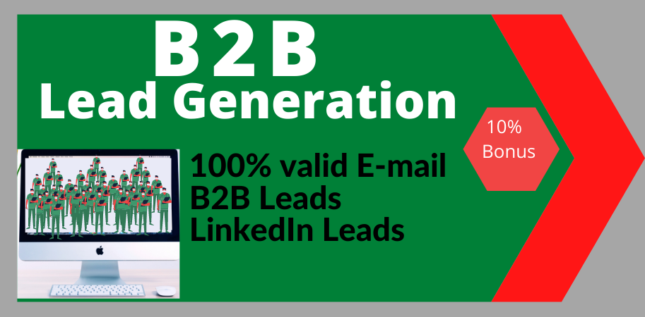 I'll provide you B2B lead generation and niche targeted email list for your business